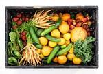 Trouver des sources naturelles de vitamines